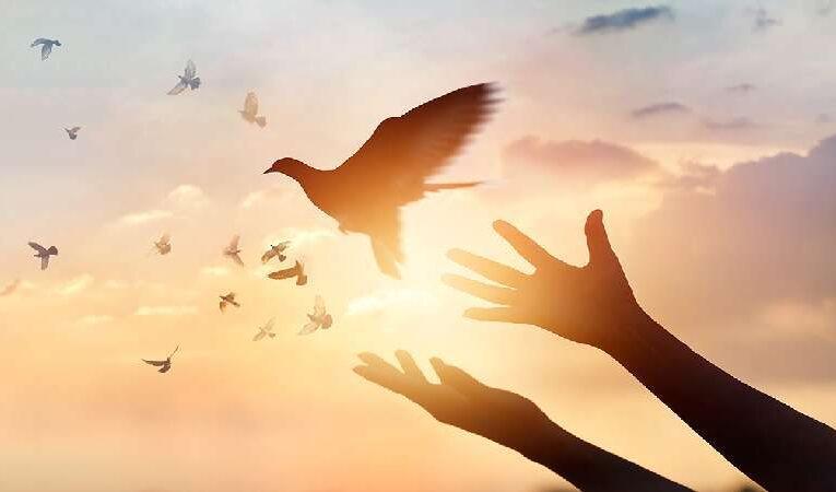 வேத வசனத்தை கைக்கொள்வதால் நமக்கு கிடைக்கும் ஆசிர்வாதங்கள்