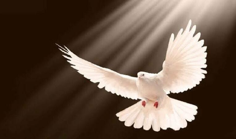 பெந்தேகோஸ்தே திருநாளில் அதிர்ச்சி செய்தி!